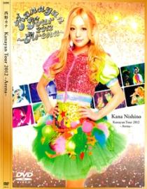 Kana Nishino Kanayan Tour 2012 Arena