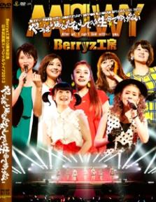 Berryz Kobo Jusshuu Nen Kinen Nippon Budokan Special Live 2013 Yappari Anata Nashi Deha Ikite