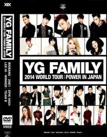 YG FAMILY 2014 World Tour Power in Japan