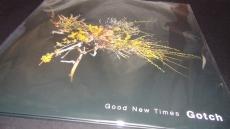 Gotch Good New Times Vinyl $1190